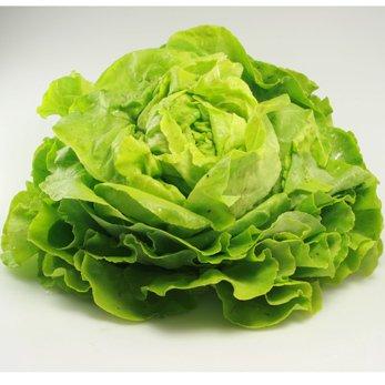 Salat Crispy Mix Grünrot Ihr Lieferservice Für Bioprodukte In